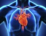 Признаки и способы лечения нестабильной стенокардии