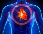 Что такое электрическая ось сердца?