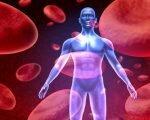 Повышенная свертываемость крови человека